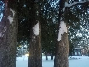 Snow blown 7 feet above the ground...